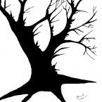 Духи дерева