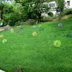Пузыри из лозы