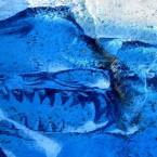 Скелет реликтовой рыбы, замороженный в леднике на озере Абрау-Дюрсо. Авторы Художники Александр Аржанов и Сергей Шевелев.