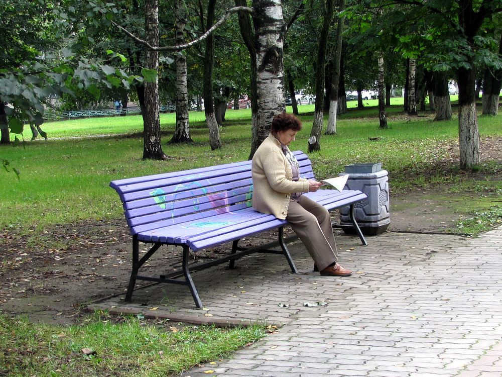 гербарий на скамейках