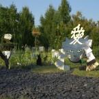 Кот в маске самурая в лучах заходящего солнца