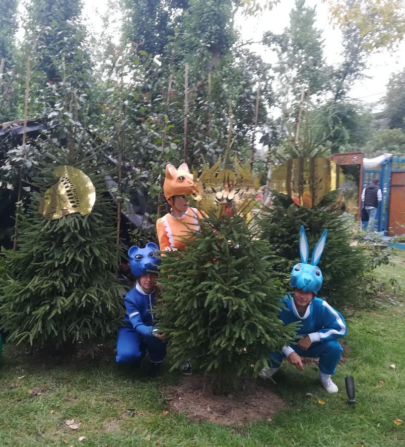 Маски в лесу масок