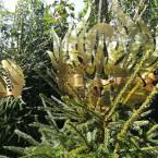 Лес масок