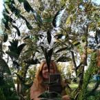 В отражении лесного бога Цернунна