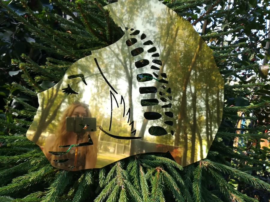 В отражении Королевы леса