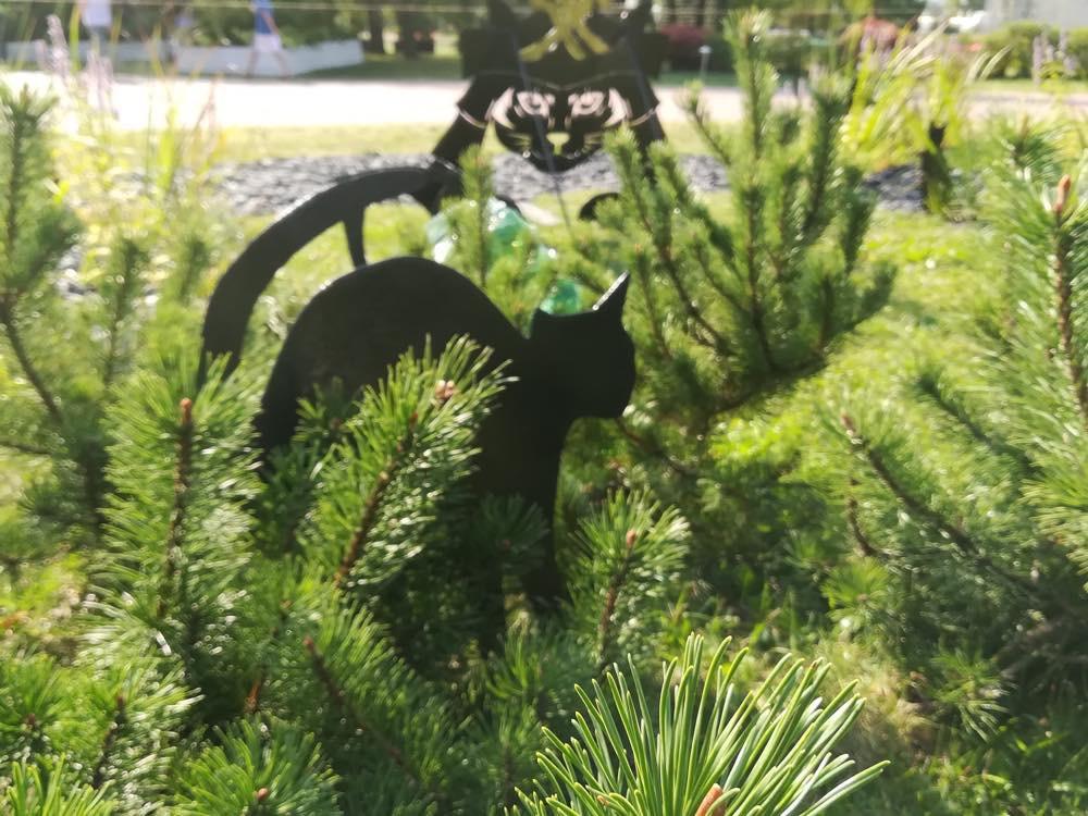 """Кот в саду """"Найди кота"""""""