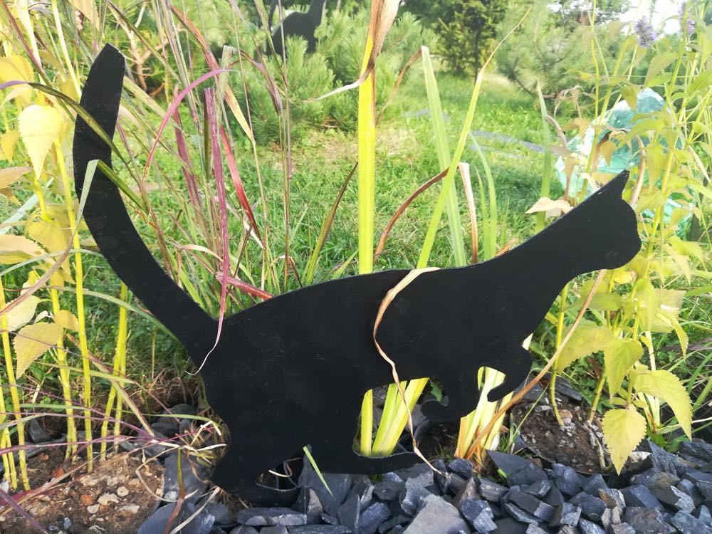 Коты в саду.