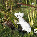 Мышка в траве