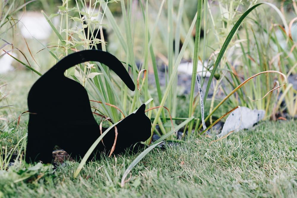 Коты в саду.  Все коты находятся в движении, это дает саду определенный ритм.