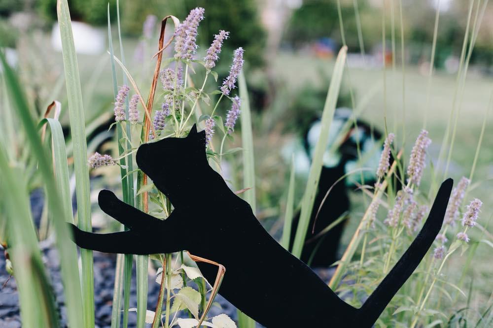 Коты в саду.  Все коты находятся в движении, это дает саду определенный ритм. Благодаря этому, сад кажется живым.